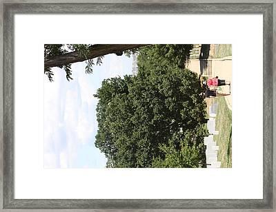Arlington National Cemetery - 121240 Framed Print by DC Photographer