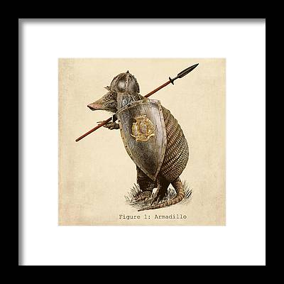 Armor Framed Prints