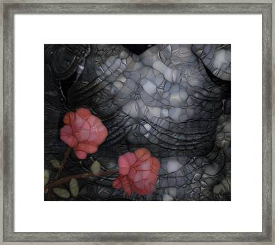 Armour And Rose 2 Framed Print by Jack Zulli