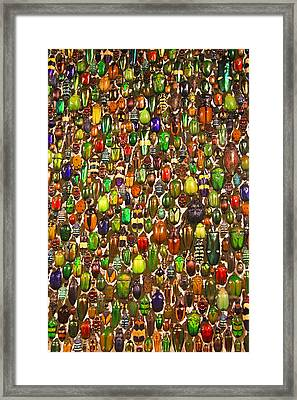 Army Of Beetles And Bugs Framed Print