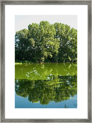 Arno River At Ponte Buriano, Ponte Framed Print by Nico Tondini