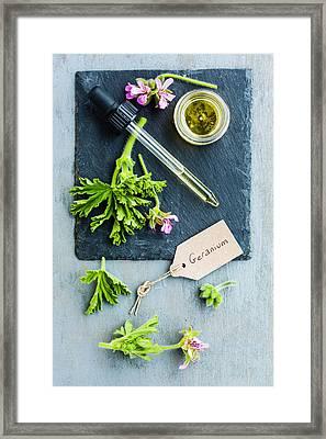 Aromatherapy, Geranium Essential Oil Framed Print