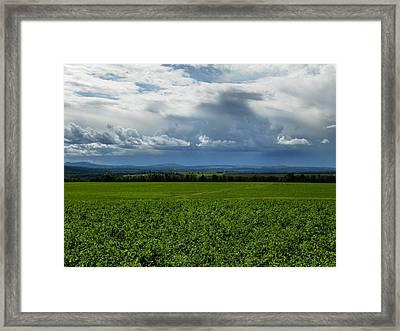 Aroostook County 3 Framed Print
