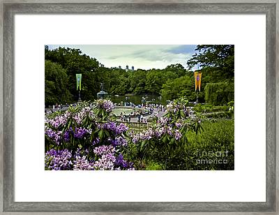 Around Bethesda Fountain Framed Print by Madeline Ellis