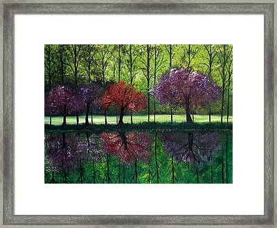 Around Bristol Park Framed Print by Lisa Aerts