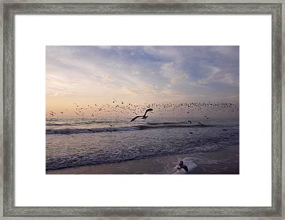 Around The Beach Framed Print