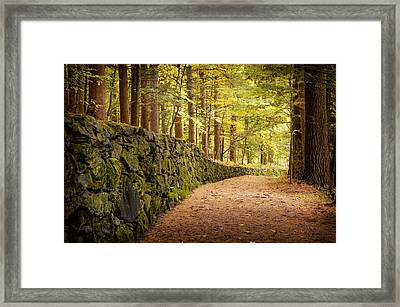 Around The Bend Framed Print by Aron Kearney