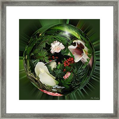 Around The Garden Framed Print by Pete Trenholm