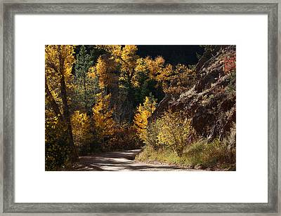 Around The Next Bend Framed Print by Mike Flynn