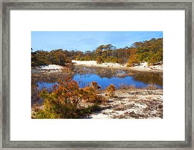 Around The Pond Framed Print by Robert Pilkington