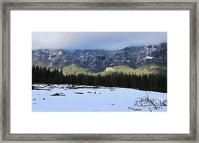 Arrival Framed Print by Tim Rice