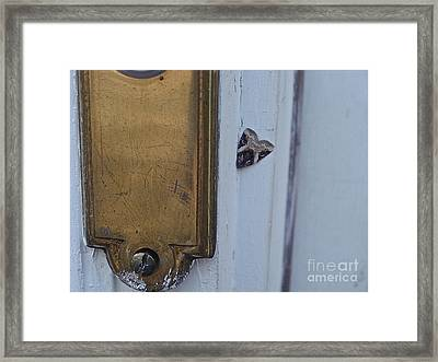 Arrowhead Doorbell Moth Framed Print