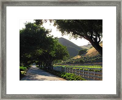 Arroyo Seco Framed Print