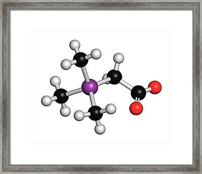 Arsenobetaine Organoarsenic Molecule Framed Print by Molekuul