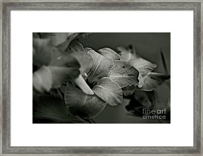 Art And Love Washes Away From The Soul The Dust Of Every Day Life. Framed Print by  Andrzej Goszcz