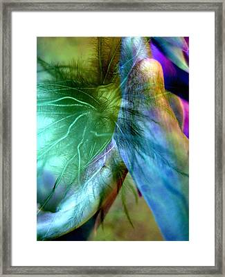 Art Of Deception Framed Print by Shirley Sirois