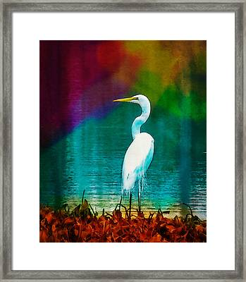 Art Of The Egret Framed Print by Frank Bright