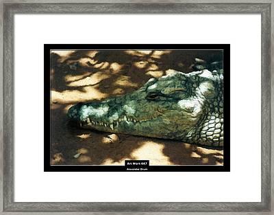 Art Work 087 Crocodile Framed Print by Alexander Drum