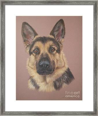 Arthur - German Shepherd Framed Print by Joanne Simpson