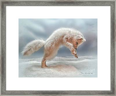 Artic White Wolf Framed Print by Joan  Minchak