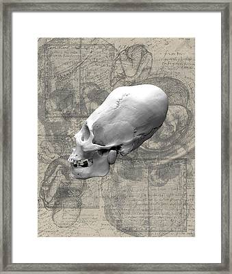 Artifactus I Framed Print by Charles Creasy Jr