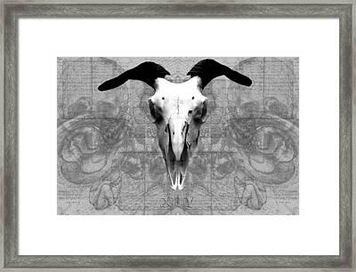 Artifactus I I Framed Print by Charles Creasy Jr