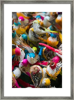 Artificial Birds For Sale At A Market Framed Print by Panoramic Images
