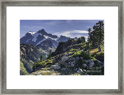 Artist Trail Framed Print