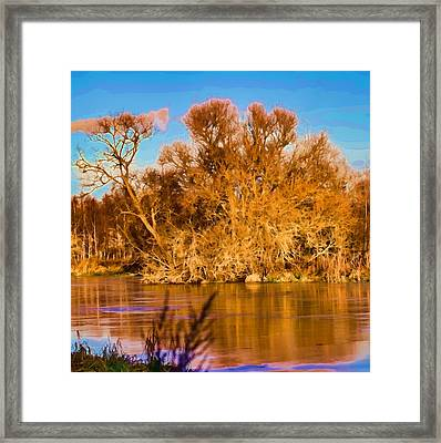 Artistic Big Tree Colored Coloured #orange By Sun On January 2 2015 Besides The Creek Of Enkoping Framed Print by Leif Sohlman