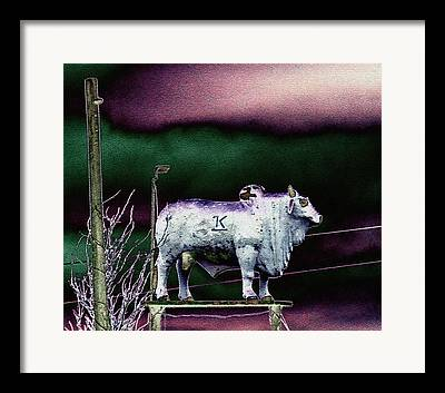 Braham Bulls Framed Prints