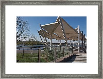 Artistic Canopy Framed Print