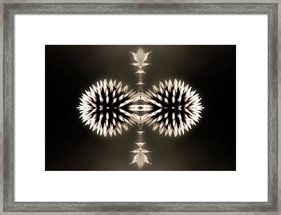Artistic Flower Abstract Framed Print by Don Johnson