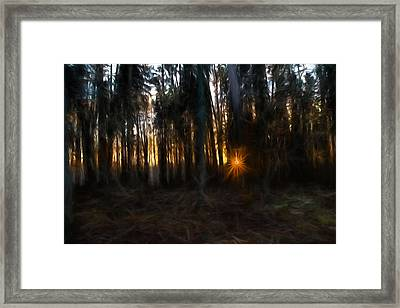 Artistic Painterly Sun Between Trees  Framed Print
