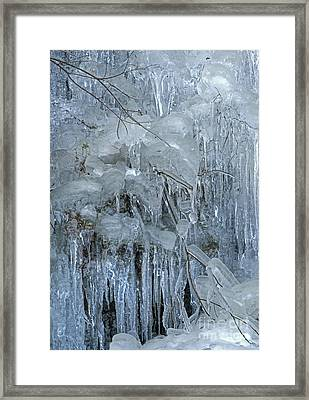 Artistry In Ice 9 Framed Print