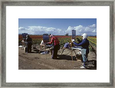 Artists Painting Tulip Fields Standing In A Row  Framed Print by Jim Corwin