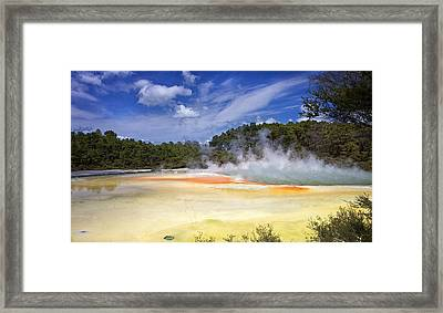 Framed Print featuring the photograph Artists Palette by Kim Andelkovic
