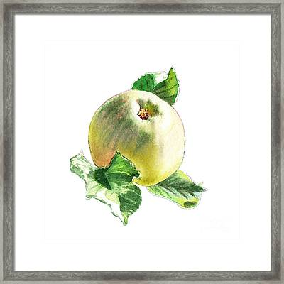 Framed Print featuring the painting Artz Vitamins Series A Happy Green Apple by Irina Sztukowski
