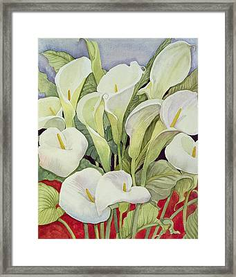 Arum Lillies Framed Print by Llian Delevoryas