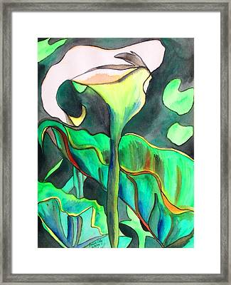 Arum Lily Framed Print by Sacha Grossel