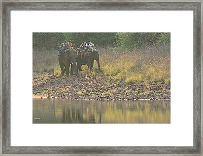 As Close As It Gets Framed Print by Fotosas Photography