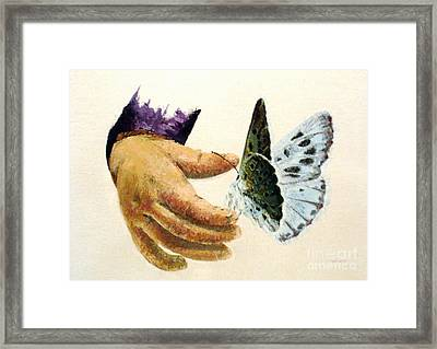 As Delicate As A Butterfly  Framed Print