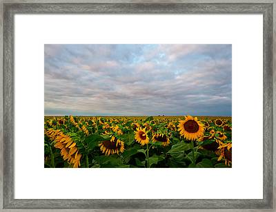 Framed Print featuring the photograph As Far As The Eye Can See by Ronda Kimbrow