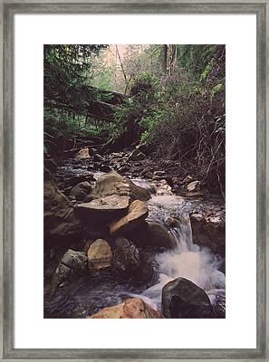 As Free As This Framed Print by Laurie Search