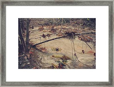 As Hopes Pass Away Framed Print by Laurie Search