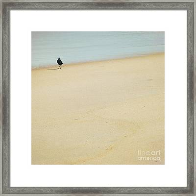 As I Wander Framed Print by Sharon Coty