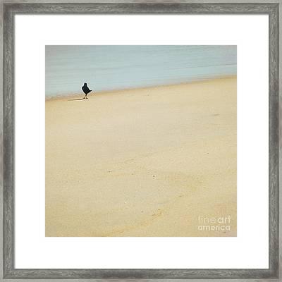 As I Wander Framed Print by Sharon Kalstek-Coty