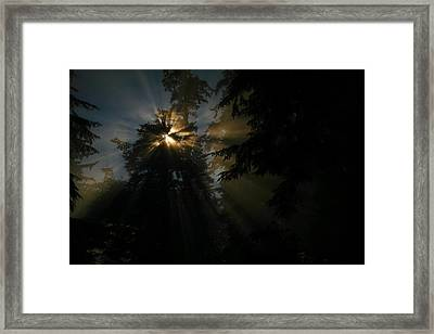As If I Needed Some Inspiration Framed Print by Jeff Swan
