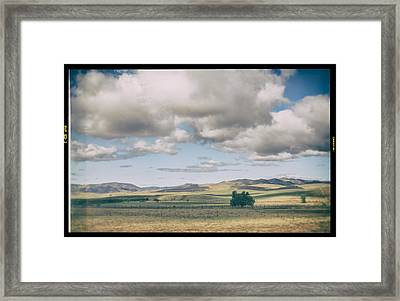 As If There Weren't A Care In The World Framed Print by Laurie Search
