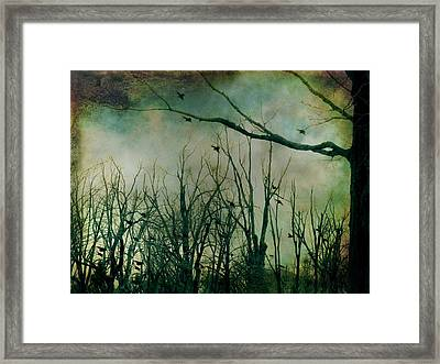 As Night Apaproaches  Framed Print