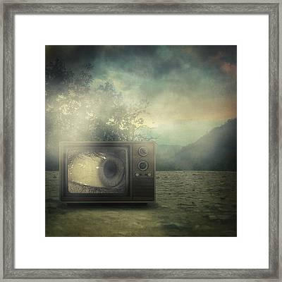 As Seen On Tv Framed Print by Taylan Apukovska